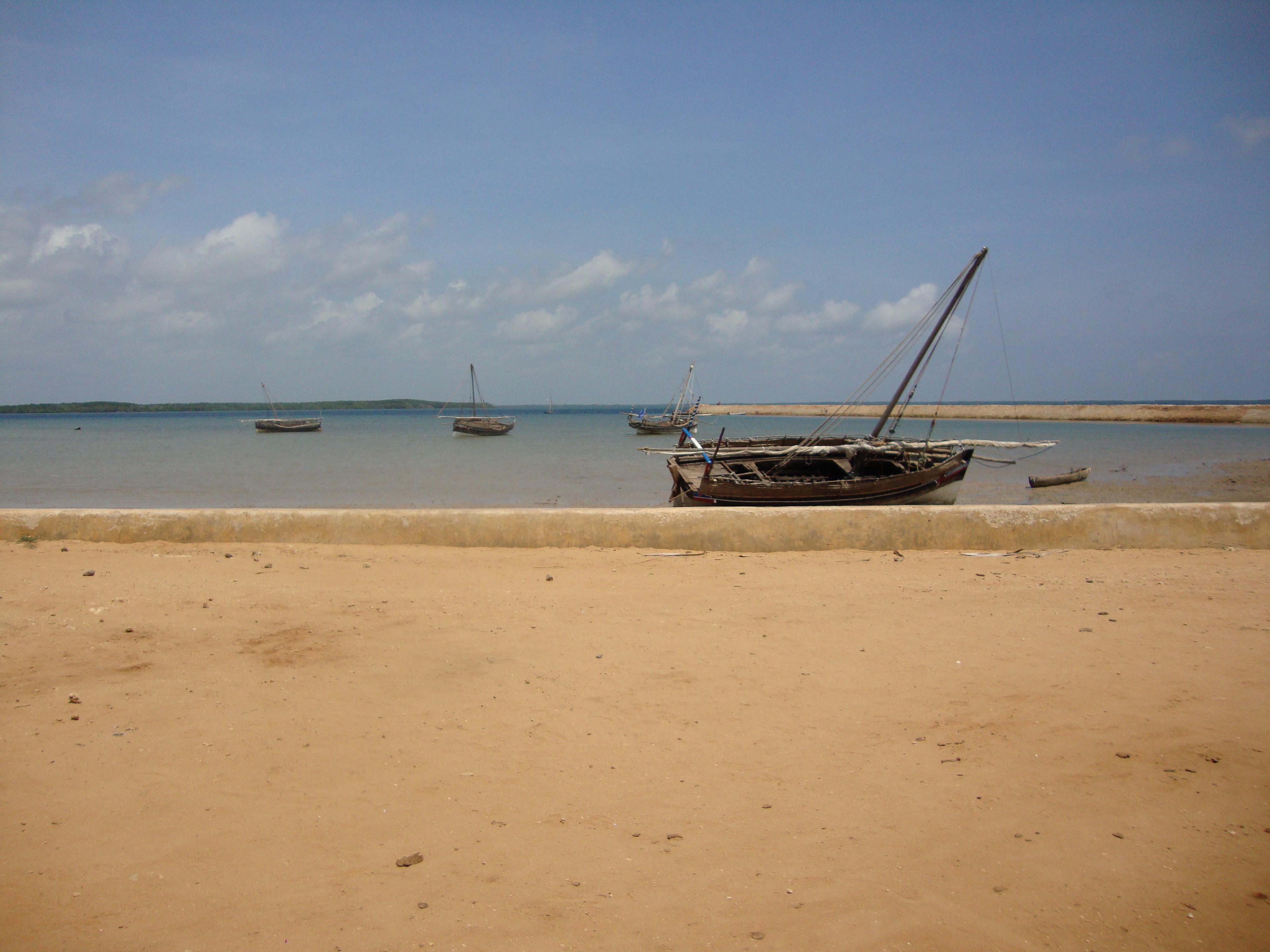 """""""Harbor at low tide, Ndau Island, Kenya, 2009."""" Photograph taken by NYAS Anthropology Treasurer Ryan Raaum"""